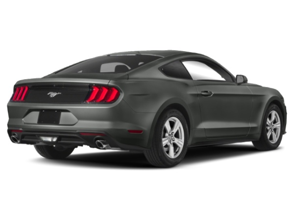 2019 Ford Mustang in Raleigh, NC