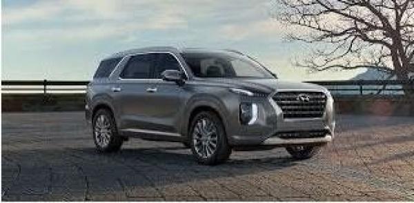 2020 Hyundai Palisade in Newnan, GA