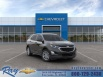 2020 Chevrolet Equinox LS with 1LS FWD for Sale in Fox Lake, IL