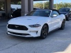 2019 Ford Mustang EcoBoost Premium Convertible for Sale in Jacksonville, FL