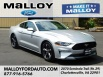 2019 Ford Mustang EcoBoost Fastback for Sale in Charlottesville, VA
